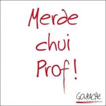 merde_chui_prof